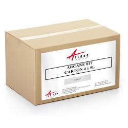 Nettoyant Concentré Dégraissant Désincrustant Sol Carton 4x5L ARCANE 817